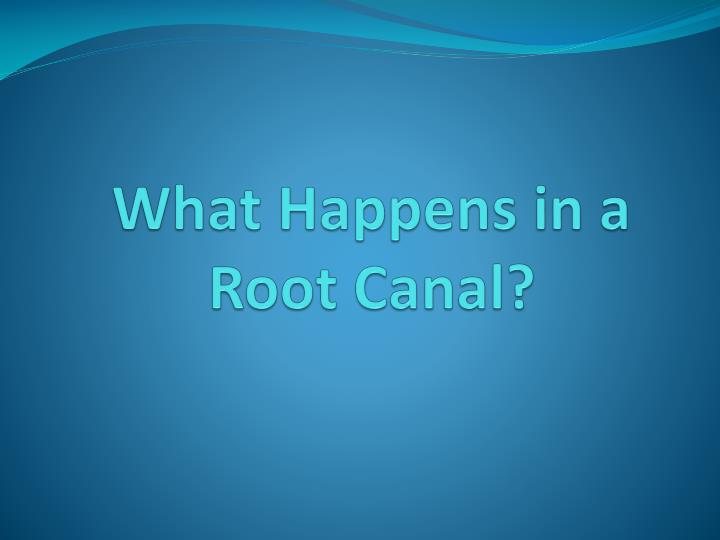 What happens in a root canal