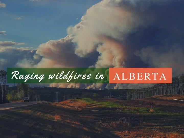 seething out of control fires in alberta n.