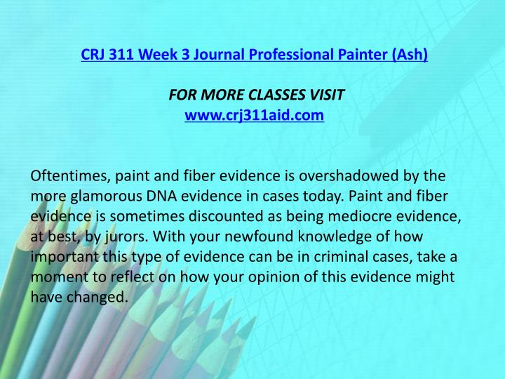 CRJ 311 Week 3 Journal Professional Painter (Ash)