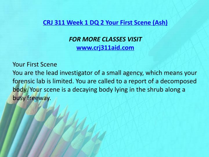 CRJ 311 Week 1 DQ 2 Your First Scene (Ash)