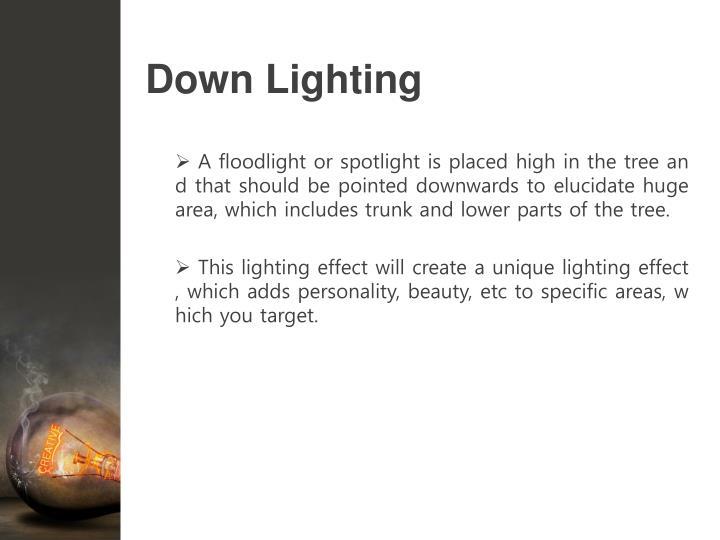 Down Lighting