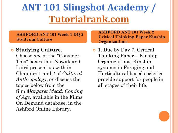 Ant 101 slingshot academy tutorialrank com2