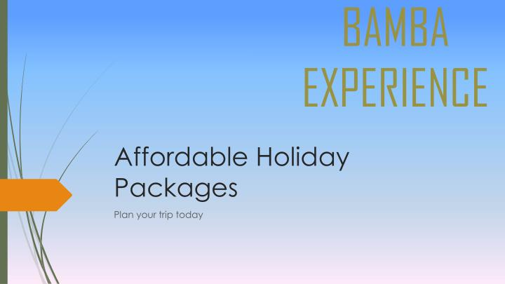 affordabl e holiday packages n.