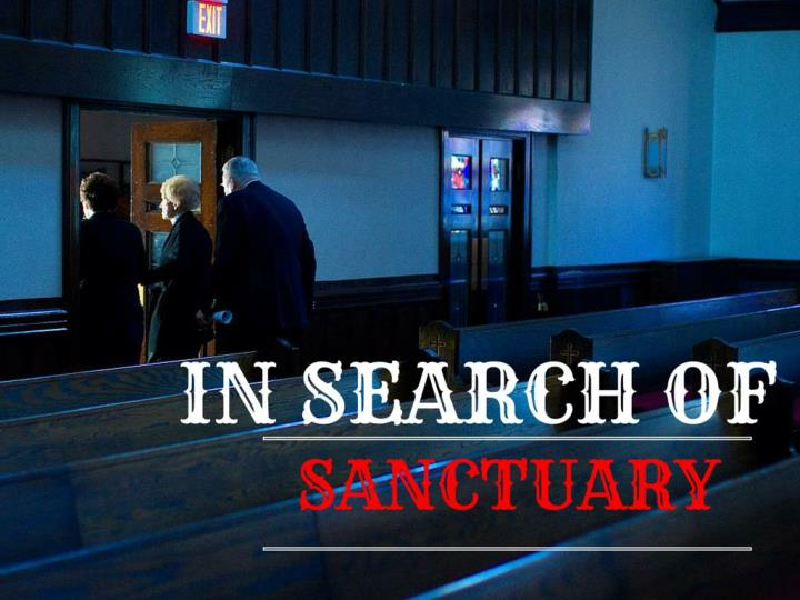 in search of sanctuary n.