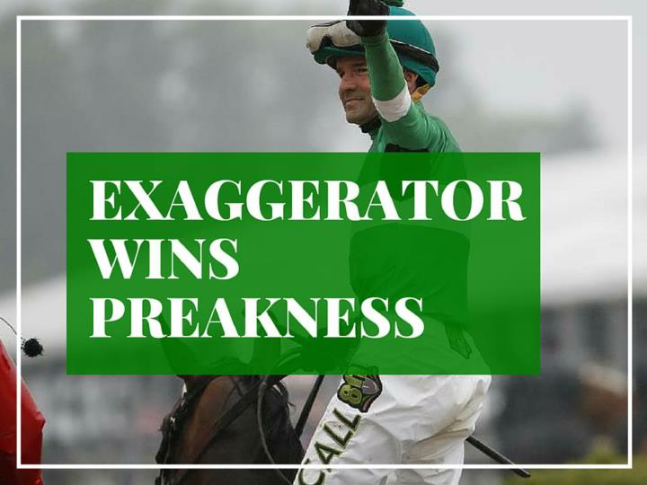 exaggerator wins preakness n.
