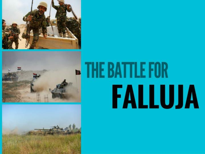 the fight for falluja n.