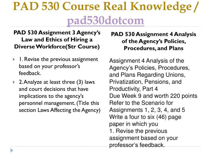 Assignment 1 rationale and analysis for agency selected essay