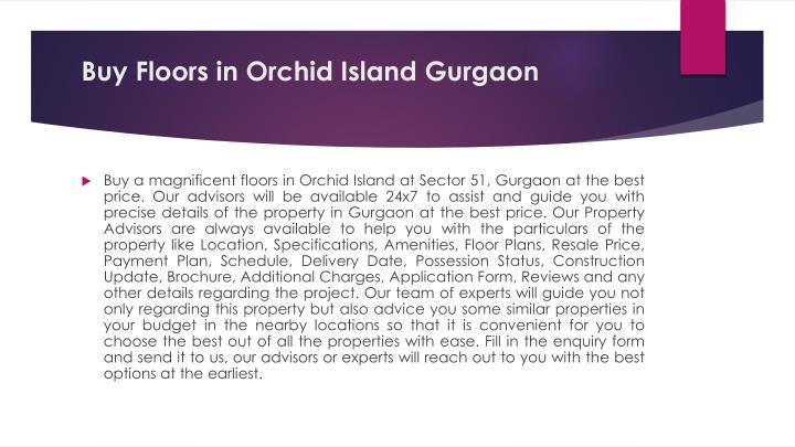 Buy Floors in Orchid Island