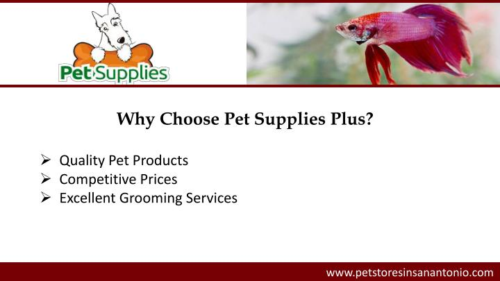 Why Choose Pet Supplies Plus?