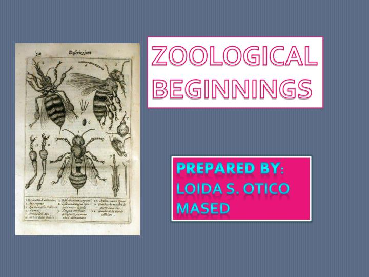 Ppt history of zoology powerpoint presentation id7357425 zoological beginnings toneelgroepblik Image collections