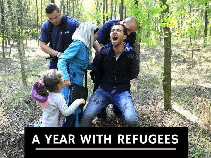 a year with refugees n.