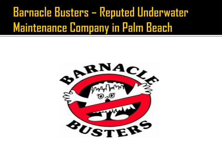 Barnacle busters reputed underwater maintenance company in palm beach