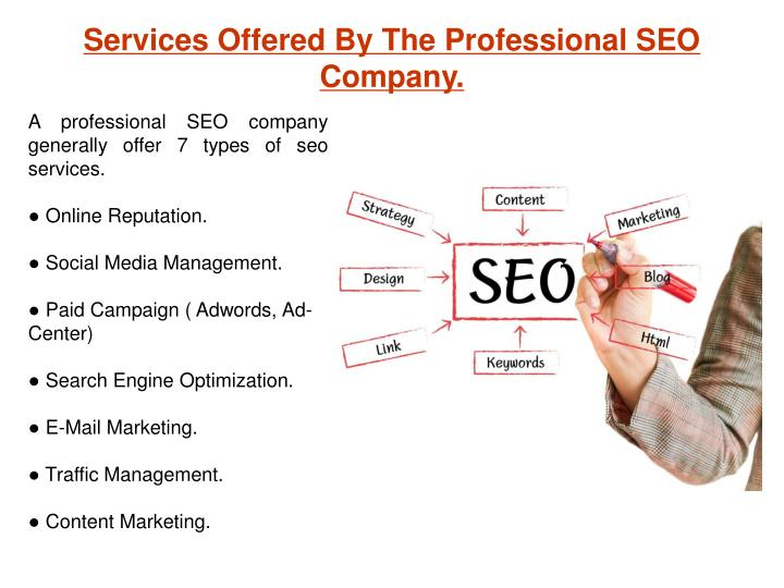 Services Offered By The Professional SEO  Company.