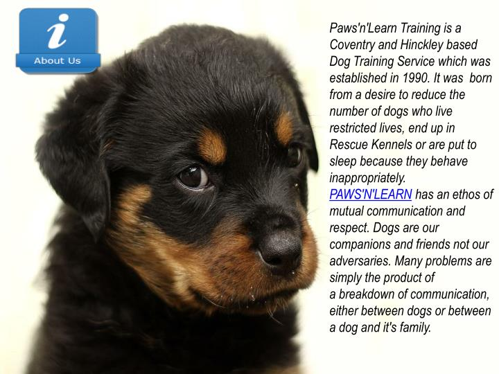 Paws'n'Learn Training is a Coventry and Hinckley based Dog Training Service which was established in...