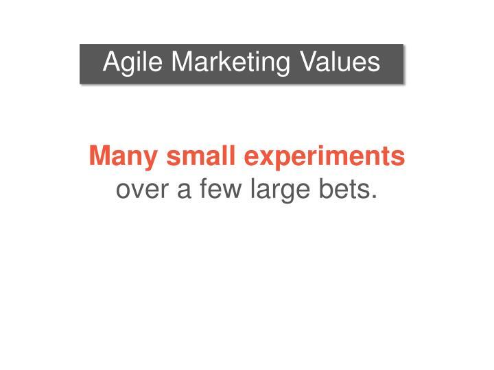 Agile Marketing Values
