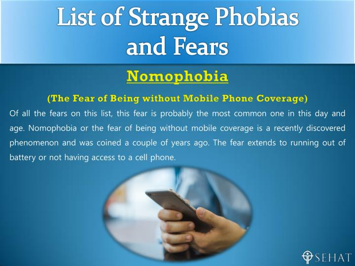 essay on fears and phobias Searching for phobias essay essays find free phobias essay essays, term papers, research papers, book reports why do people develop fears and phobias.