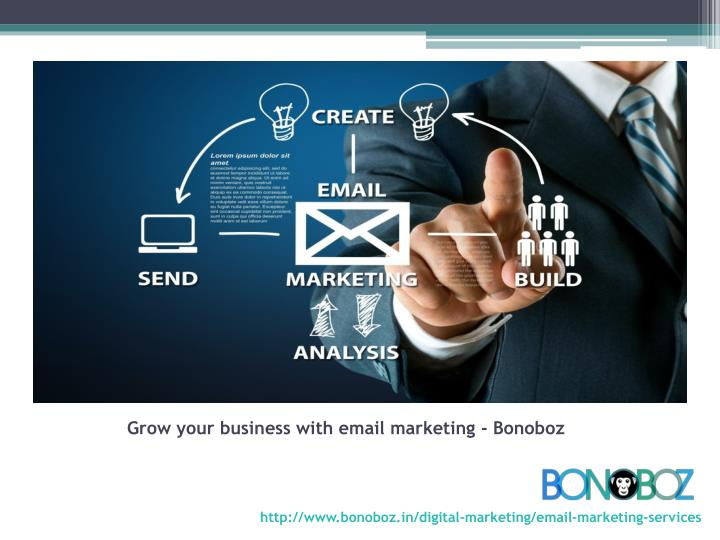 Grow your business with email marketing - Bonoboz
