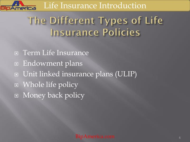 Pictures of types of life insurance policy kidskunst. Info.