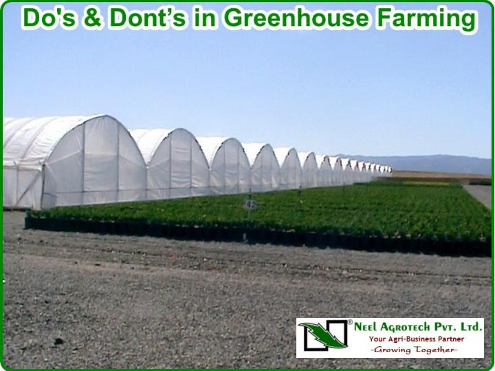 Do s and dont s in greenhouse farming