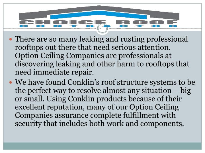 There are so many leaking and rusting professional rooftops out there that need serious attention. O...