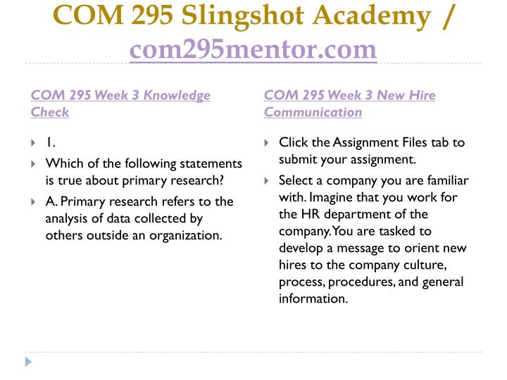 com295 r2 communication process template wk1