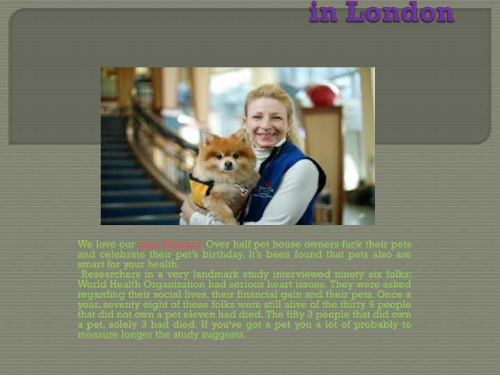 the benefits of pet therapy in london n.