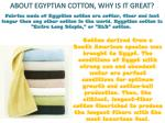 about egyptian cotton why is it great