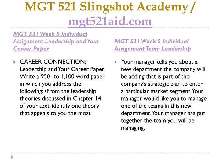mgt 521 strategic plan