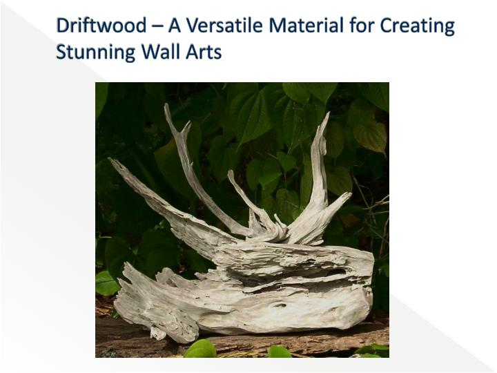 driftwood a versatile material for creating stunning wall arts n.