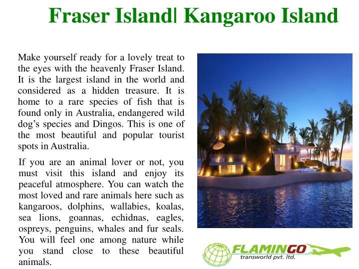 Fraser island kangaroo island