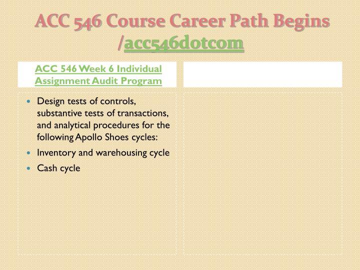 ACC 546 Week 6 Individual Assignment Audit Program