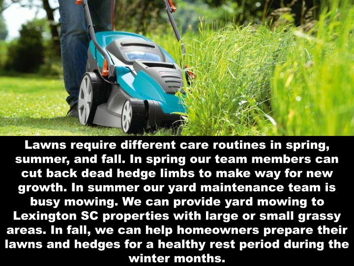 Lawns require different care routines in spring, summer, and fall. In spring our team members can cut back dead hedge limbs to make way for new growth. In summer our yard maintenance team is busy mowing. We can provide yard mowing to Lexington SC properties with large or small grassy areas. In fall, we can help homeowners prepare their lawns and hedges for a healthy rest period during the winter months.