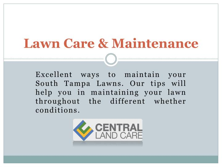 lawn care maintenance n.