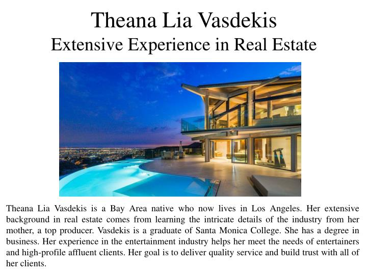 theana lia vasdekis extensive experience in real estate n.
