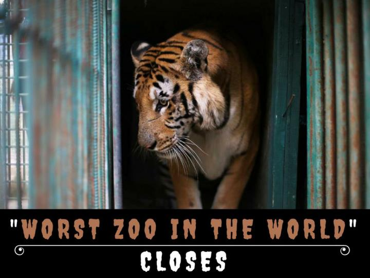 most noticeably bad zoo on the planet closes n.