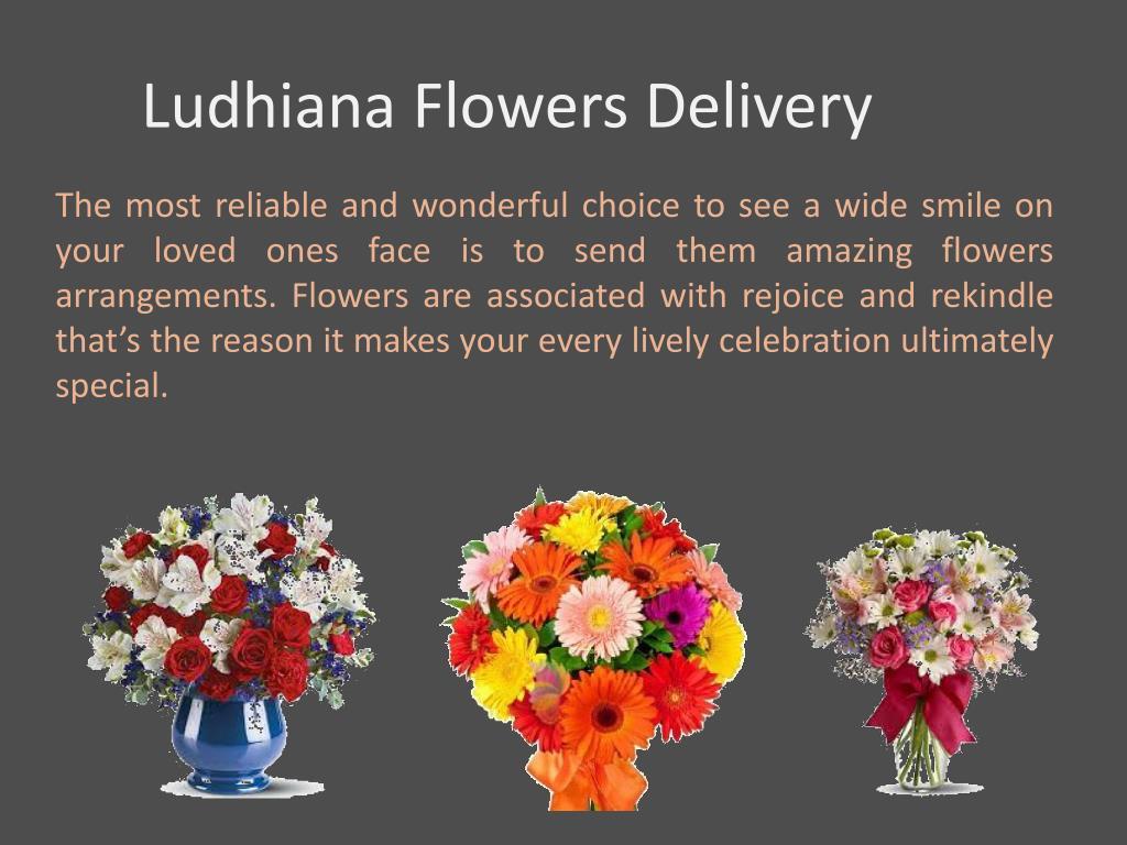 PPT - Send Flowers to Ludhiana PowerPoint Presentation - ID:7391879