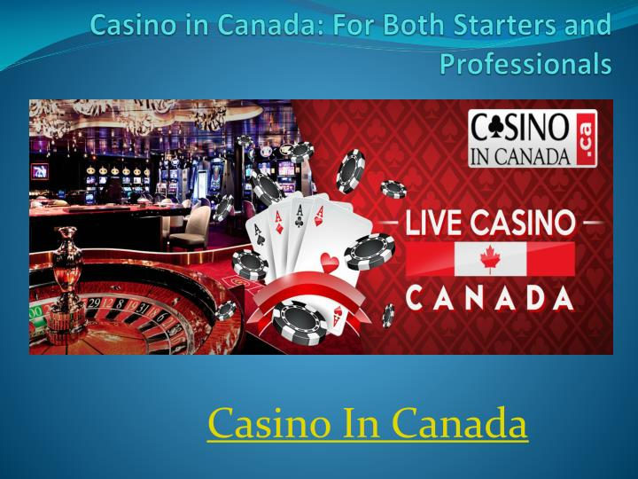 casino in canada for both starters and professionals n.