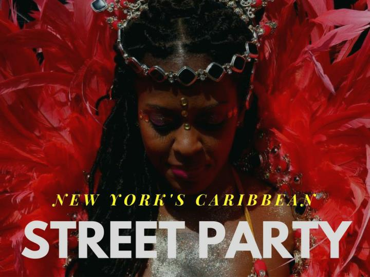 new york s caribbean street party n.