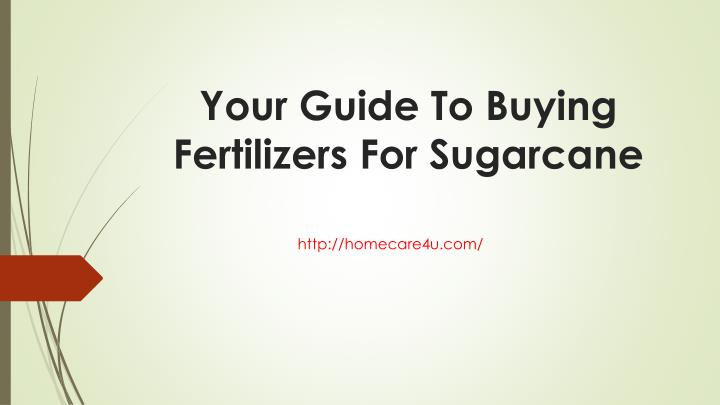 your guide to buying fertilizers for sugarcane n.
