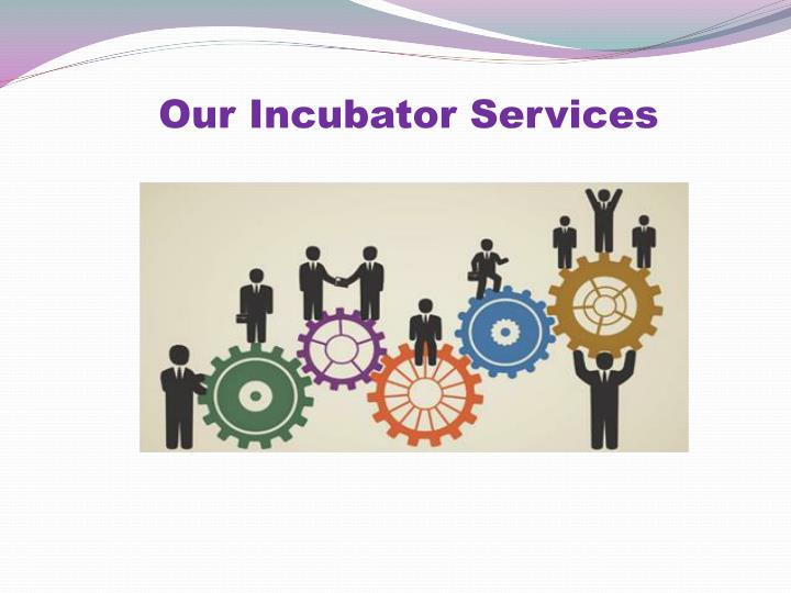 Our Incubator Services