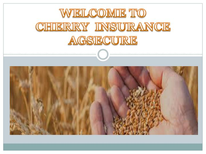 welcome to cherry insurance agsecure n.