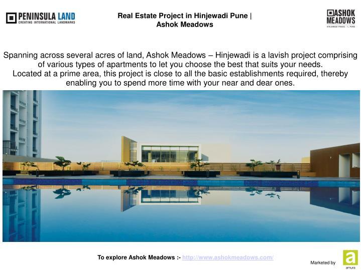 Real Estate Project in Hinjewadi Pune  