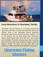clearwater fishing charters1