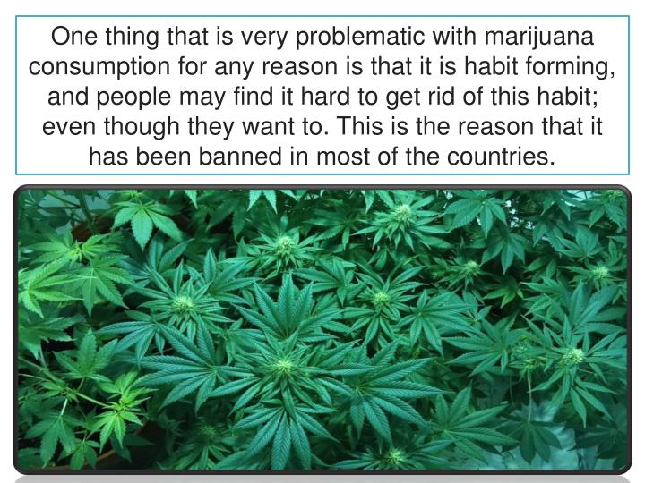 the problem with marijuana essay This is even more of a problem for asthma patients because they already suffer from partially obstructed airways long term marijuana usage would just add to the person's difficulties.