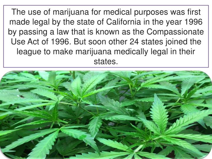 exploring the uses of marijuana for medical purposes