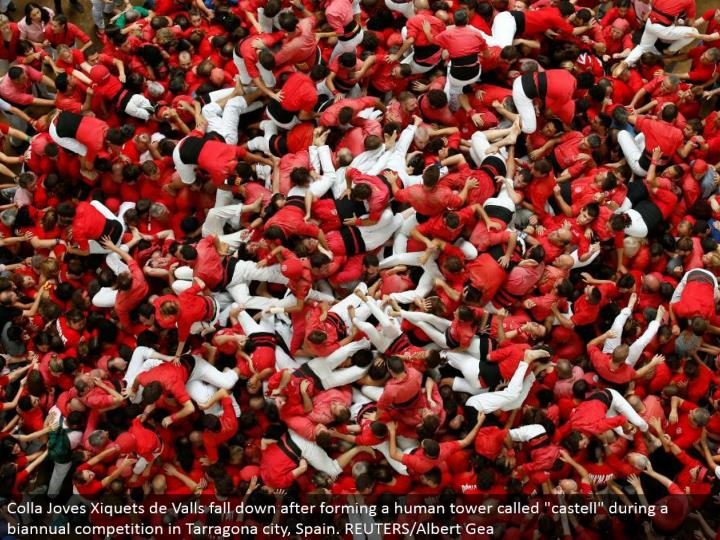 """Colla Joves Xiquets de Valls tumble down in the wake of shaping a human tower called """"castell"""" amid a semiannual rivalry in Tarragona city, Spain. REUTERS/Albert Gea"""