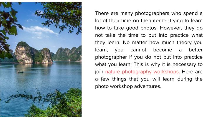 There are many photographers who spend a lot of their time on the internet trying to learn how to ta...
