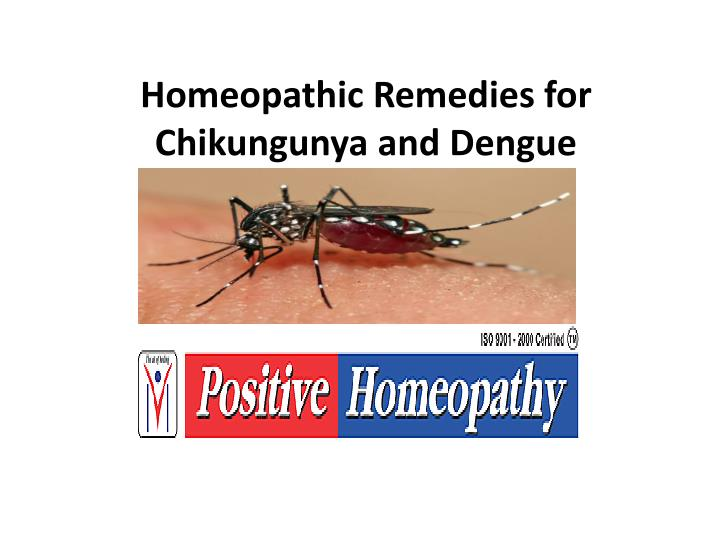 homeopathic remedies for chikungunya and dengue n.
