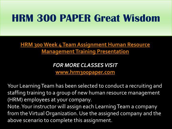HRM 300 PAPER Great Wisdom