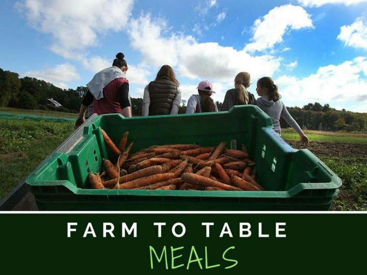Homestead to table meals